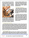 0000085621 Word Templates - Page 4