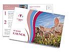 0000085624 Postcard Template
