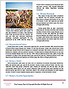 0000085624 Word Template - Page 4