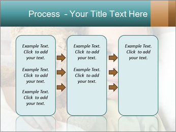 0000085625 PowerPoint Templates - Slide 86