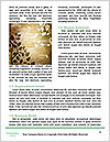 0000085628 Word Template - Page 4