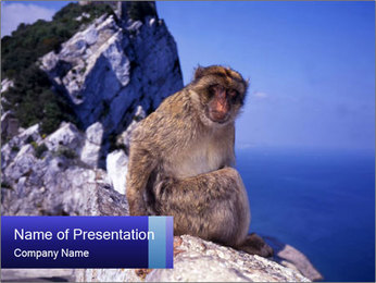 0000085632 PowerPoint Template
