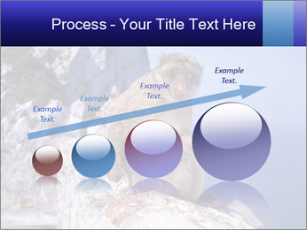 0000085632 PowerPoint Templates - Slide 87