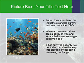 0000085635 PowerPoint Template - Slide 13