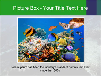 0000085635 PowerPoint Template - Slide 16