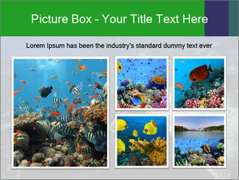 0000085635 PowerPoint Template - Slide 19