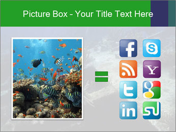 0000085635 PowerPoint Template - Slide 21