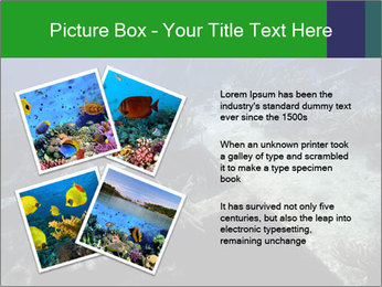 0000085635 PowerPoint Template - Slide 23