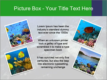 0000085635 PowerPoint Template - Slide 24