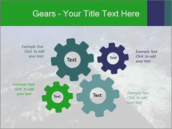0000085635 PowerPoint Template - Slide 47