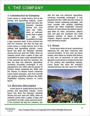 0000085635 Word Template - Page 3