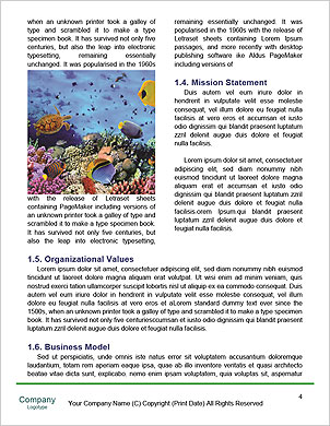 0000085635 Word Template - Page 4