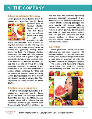 0000085637 Word Template - Page 3