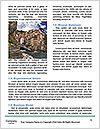 0000085639 Word Templates - Page 4