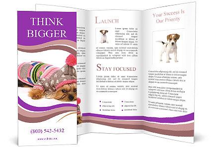0000085640 Brochure Template