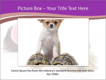 0000085640 PowerPoint Templates - Slide 16