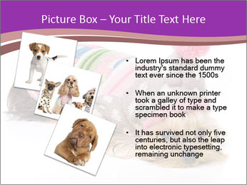 0000085640 PowerPoint Templates - Slide 17