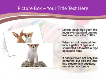 0000085640 PowerPoint Templates - Slide 20