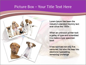 0000085640 PowerPoint Templates - Slide 23