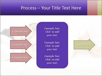 0000085641 PowerPoint Template - Slide 85