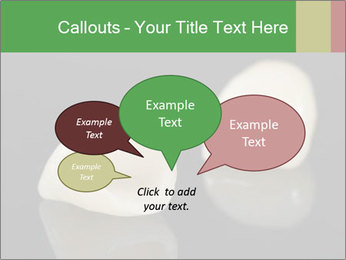 0000085646 PowerPoint Template - Slide 73