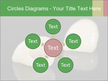 0000085646 PowerPoint Template - Slide 78