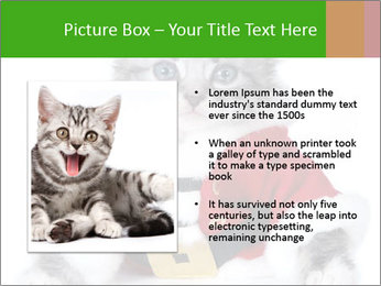 0000085650 PowerPoint Templates - Slide 13