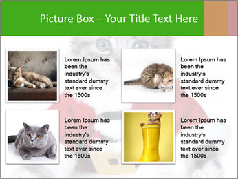 0000085650 PowerPoint Templates - Slide 14