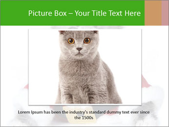 0000085650 PowerPoint Templates - Slide 15