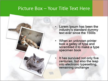 0000085650 PowerPoint Templates - Slide 17