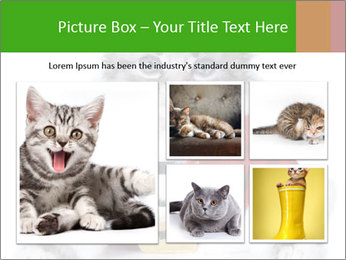 0000085650 PowerPoint Templates - Slide 19