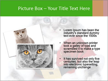 0000085650 PowerPoint Templates - Slide 20