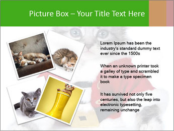 0000085650 PowerPoint Templates - Slide 23