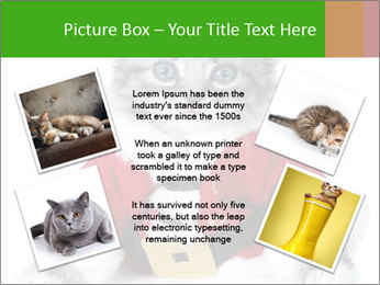 0000085650 PowerPoint Templates - Slide 24
