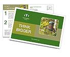 0000085651 Postcard Templates