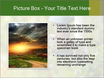 0000085651 PowerPoint Templates - Slide 13