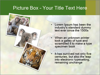 0000085651 PowerPoint Templates - Slide 17