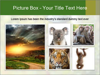 0000085651 PowerPoint Templates - Slide 19