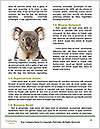 0000085651 Word Template - Page 4