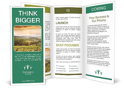 0000085657 Brochure Template