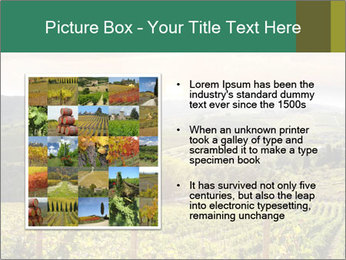 0000085657 PowerPoint Template - Slide 13