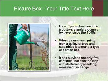 0000085664 PowerPoint Template - Slide 13