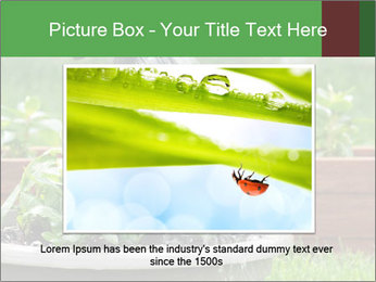 0000085664 PowerPoint Template - Slide 16