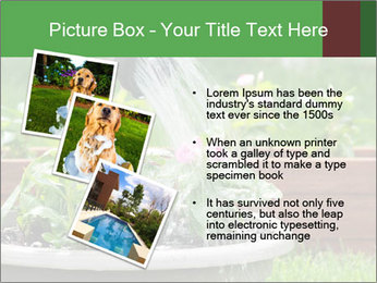 0000085664 PowerPoint Template - Slide 17