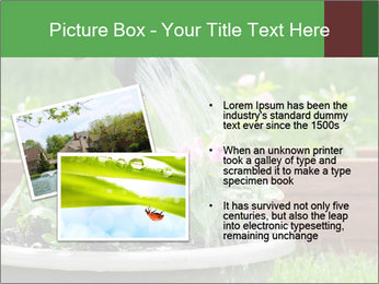 0000085664 PowerPoint Template - Slide 20