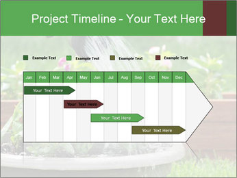 0000085664 PowerPoint Template - Slide 25
