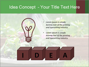 0000085664 PowerPoint Template - Slide 80