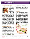 0000085668 Word Template - Page 3
