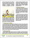 0000085672 Word Template - Page 4