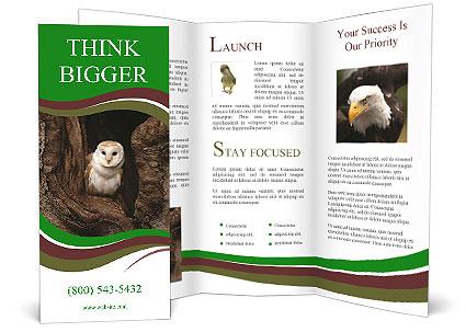 0000085673 Brochure Templates